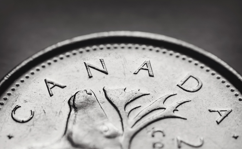 英語の「buck(s)」の意味は「dollar」。使い方を解説!